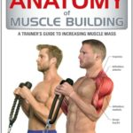 Buy Anatomy of Muscle Building: A Trainer's Guide to Increasing Muscle Mass on ? FREE SHIPPING on qualified orders
